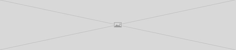 1 Stk 304 Edelstahl-Innenpflaumenblumeng/ürtel Typ Diebstahlsicherungsschraube M5 M6 M8 M10 Torx-Sicherheitsschraube mit Pfannenkopf 2//5//10 Stk Schraubenschl/üssel M5 T25